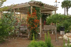 colorful pergola3.14.08 (600 x 402)